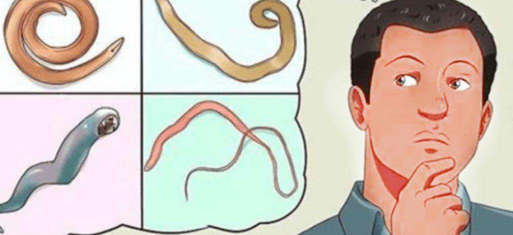 Vaikų kirmėliniai susirgimai (helmintozės) ir jų profilaktika