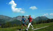 Šiaurietiškas ėjimas (Nordic Walking)