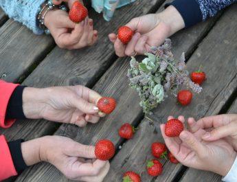 Palaikomosios grupės – reali ir ilgalaikė pagalba kopriklausomiems asmenims